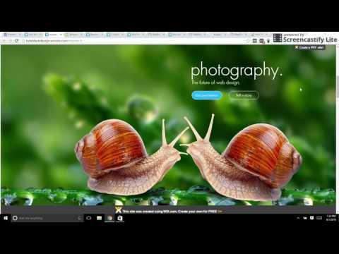 Expert Design for WIX Websites