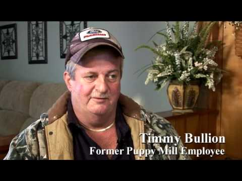Puppy Mill Insider Speaks Out
