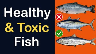 Best Type Of Fish To Eat For Health