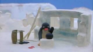 pingu - bolas de nieve con la foca