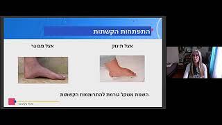 מחול:אנטומיה יישומית למחול ב' - כף הרגל, חלק א