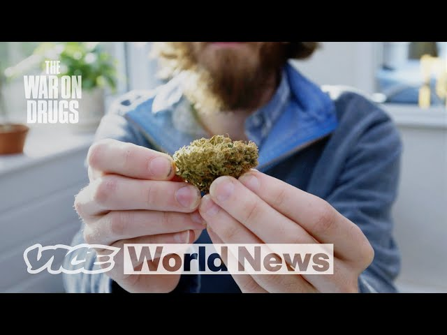 The Right Way to Legalize Weed   The War on Drugs