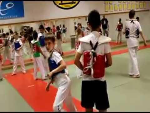 Stage multi-sports enfants été 2013