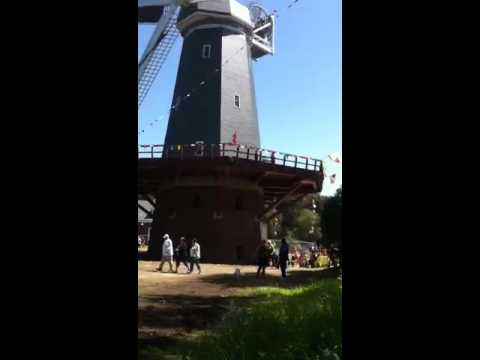 Windmills Golden Gate Park