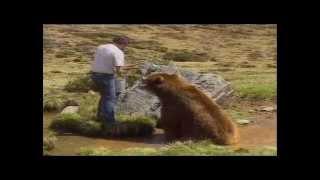 Как снимался фильм Медведь