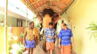 ganesh home elephant  ndia vol 4