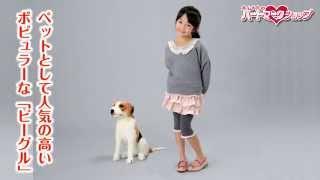 犬ぬいぐるみ ビーグル(小)