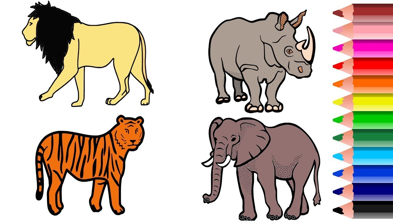 Wild Animal Coloring Pages Names And Colors Drawing And Coloring Animals Youtube