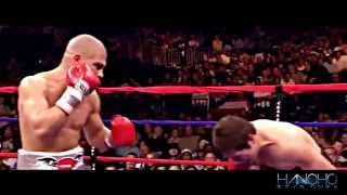 Top 20 Greatest Miguel Cotto Fights HD | Showtime HBO Boxing 2015