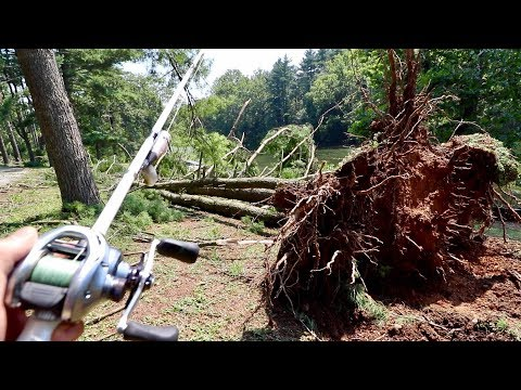 Sage X Fly Fishing Rod from YouTube · High Definition · Duration:  1 minutes 7 seconds  · 1.000+ views · uploaded on 15.07.2016 · uploaded by Ontario OUT OF DOORS