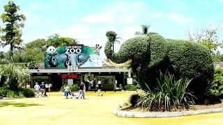 বিশ্বের সবচেয়ে বড় ও জনপ্রিয় ৫ টি চিড়িয়াখানা । Top 5 biggest zoo in the world