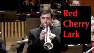 Red Cherry Lark (Omar Escobar Gómez, trumpet)