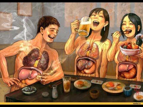 фото орган человека