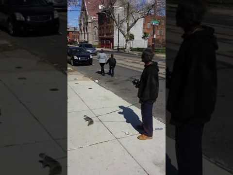 Rach On The Radio - Philly Man Walks 'Pet' Squirrel Around City With Leash [VIDEO]