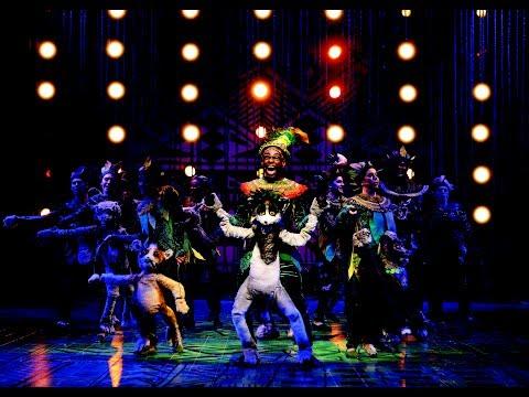 "Audiences React to ""Madagascar – A Musical Adventure"""