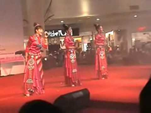 Traditional Chinese musical instruments  - Video B