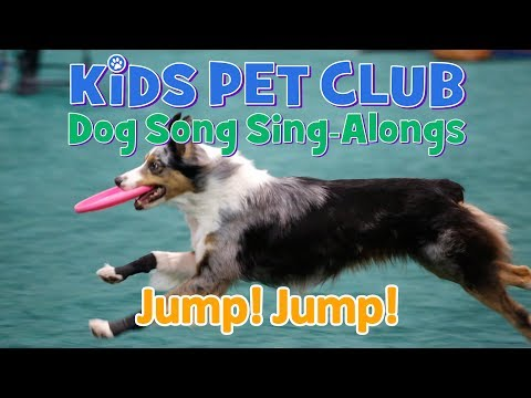 Amazing JUMP JUMP Dog Rap for Kids - you won't believe these cool dogs.