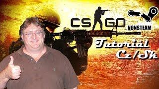 [TUTORIÁL]Jak si stáhnout CS:GO Non-steam + Multiplayer