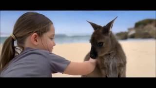 Видео об Австралии (video about Australia) www.directtalk.ru(Образование в Австралии – синоним качества, инноваций и успешного трудоустройства. Австралия занимает..., 2015-03-17T14:08:09.000Z)