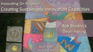 sustainable innovation capacities
