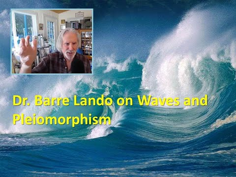 Dr. Barre Lando on Waves and Pleiomorphism