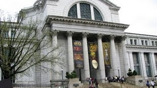 National Museum Of Natural History - Washington DC, USA