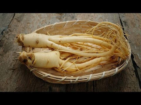 Panax Ginseng Benefits for Men & Women