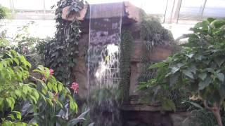 RHS Wisley Garden (November 2011)