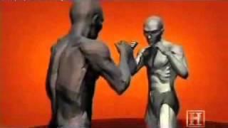 Técnicas de combate y defensa personal
