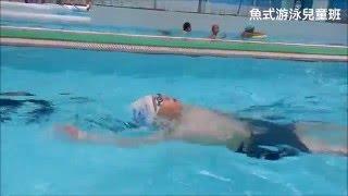 魚式游泳 陳俊勳教練 兒童班 20160514 攝影分析 仰式