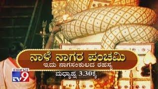 Don't Miss `Nale Nagara Panchami` At 3.30pm (Promo)