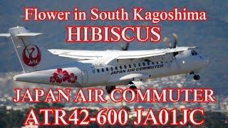 ?HIBISCUS?JAPAN AIR COMMUTER ATR42-600(JA01JC)