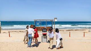 [4K] Beach Wave Sounds of East Sea after Heavy Rain ASMR BTS Spring day 강원도 여름 동해바다 주문진해변 안목해변 파도소리