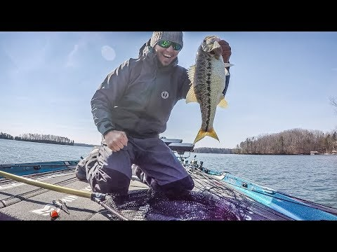 Lake Lanier | Day 2 Highlights