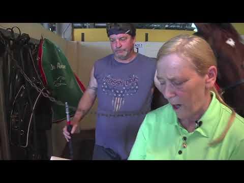 Behind The Scenes Harness Racing Horse Identifier - YouTube