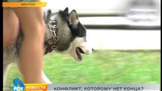 Выгул собак в Иркутске  - одно из серьёзных городских проблем