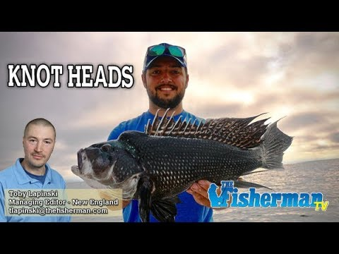 July 11, 2019 New England Fishing Report With Toby Lapinski