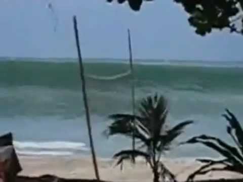 Tsunami Hits Indonesia توسنامي اندونسيا11 4