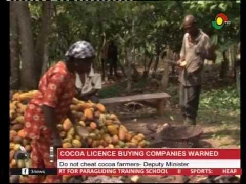 Do not cheat cocoa farmers    - Deputy Minister -  16/4/2017