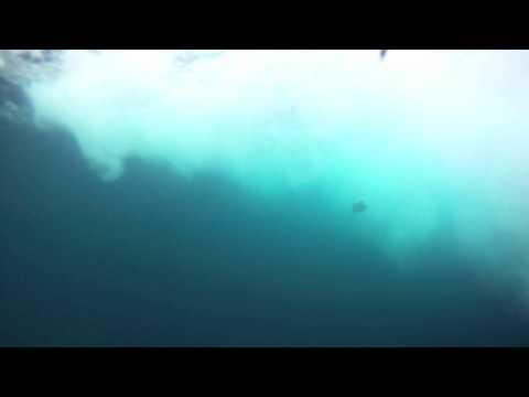 Pirates Cove 2012
