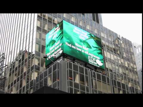 EDF Oceans Video In Times Square