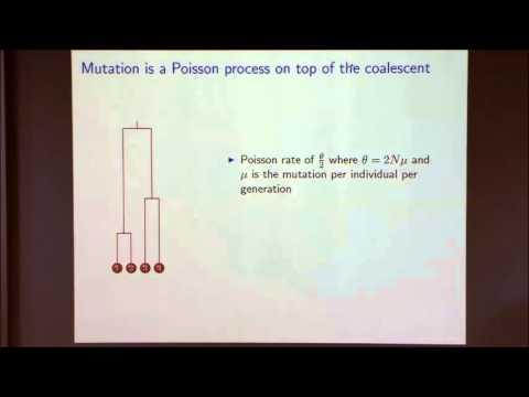 Mathematical Models in Population Genetics I
