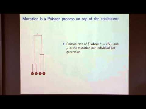Mathematical Models in Population Genetics I