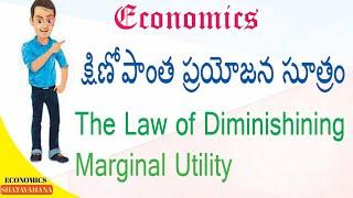 Economics: క్షీణోపాంత ప్రయోజన సూత్రం,diminishing marginal utility,economics class,economics,