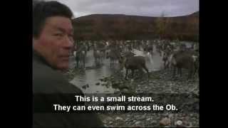 On foot through gulag land - Polar Urals (excerpt)