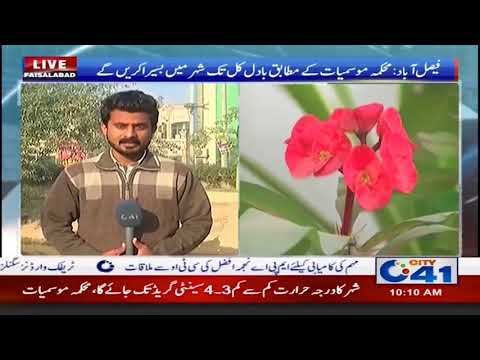 Weather Forecast of Faisalabad | City41