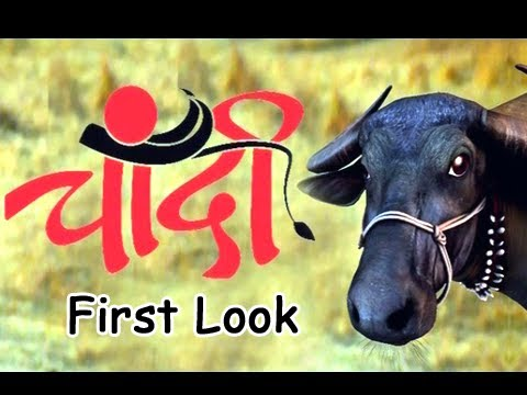 Upcoming Marathi Movie Chandi - First Look...