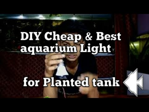 Home Made Cheap & Best Aquarium Light