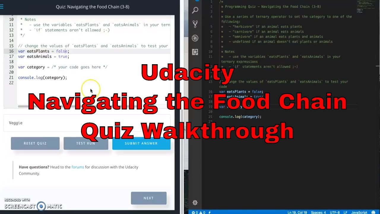 Udacity - Navigating the Food Chain Quiz Walkthrough - JavaScript