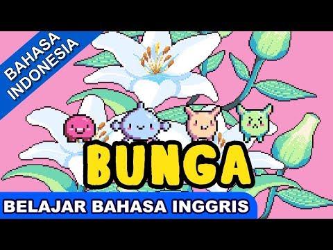 Lagu Belajar Bahasa Inggris | Bunga (Flowers) | Lagu Anak Terbaru | Bibitsku